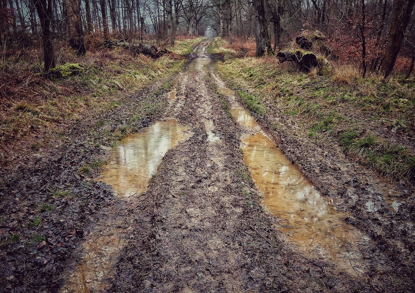 Wandern via @@henwickcharlie | Land Rover Explore